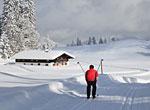 Langlauf am Arber Bayern
